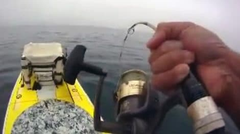 Stand up paddle fishing, que de bonnes vidéos !