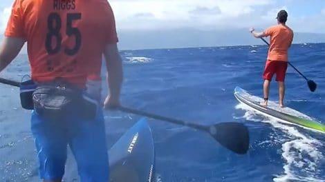 Downwind stand up paddle en race avec Livio Menelau