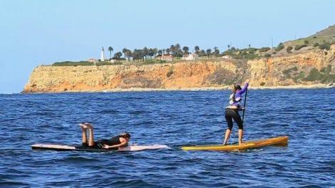 Bark : Sup Paddle, Run, Paddle