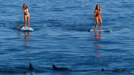 Les planches stand up paddle F-One de 2015