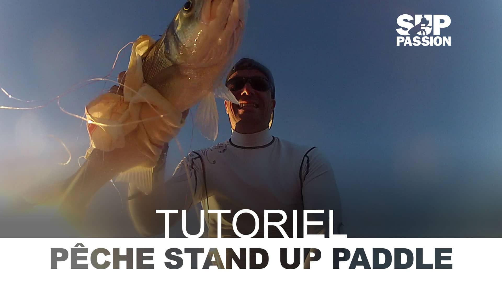 Tutoriel vidéo, pêcher le bar en stand up paddle
